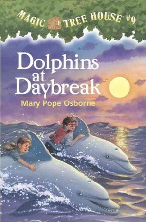 Magic Tree House Chapter Books # 1-12 By Mary Pope Osborne